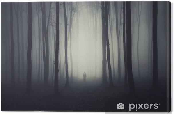 Obraz na płótnie Straszne sceny las z ducha na ścieżce - Ezoteryka