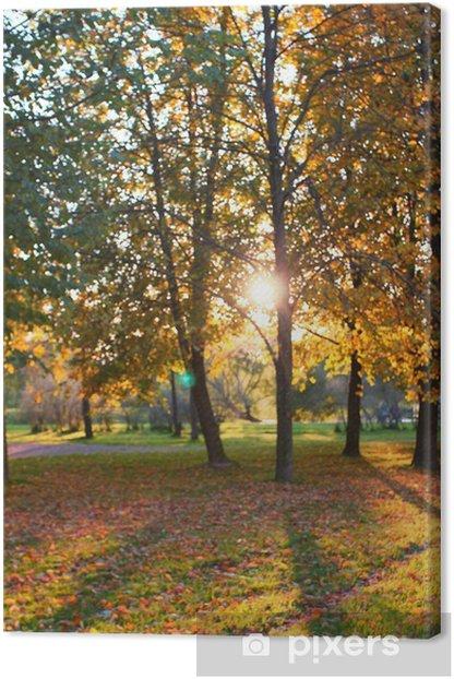 Obraz na płótnie Sunset Trees Landscape - Pory roku