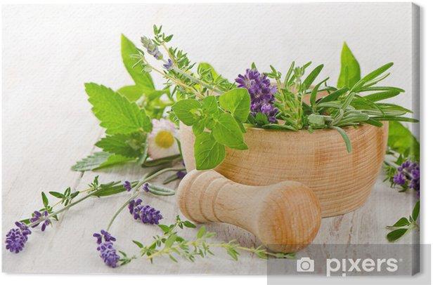 Obraz na płótnie Świeże zioła -