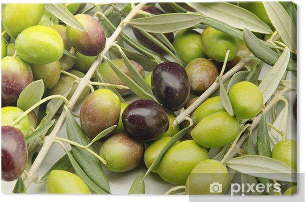 Obraz na płótnie Świeżo zebrane oliwki - Oliwki