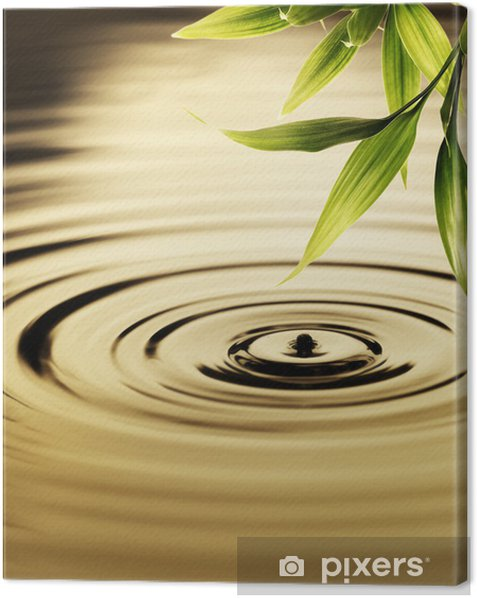 Obraz na płótnie Świeżych liści bambusa nad wodą - Style