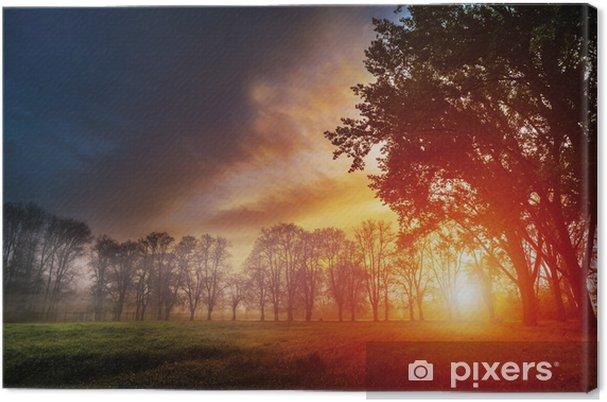 Obraz na płótnie Świt w parku - Europa