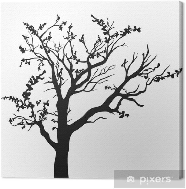 Obraz na płótnie Sylwetka drzewa z liśćmi na białym tle. - Drzewa