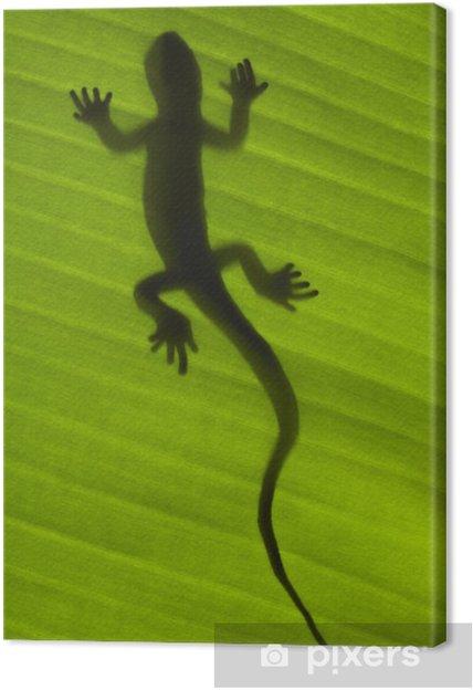 Obraz na płótnie Sylwetka jaszczurki gecko na zielony liść - Tematy