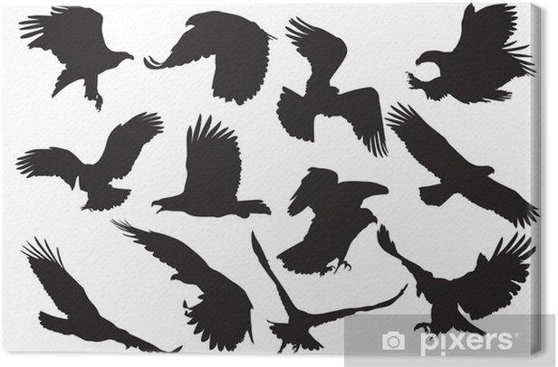 Obraz na płótnie Sylwetka orła wektora - Ptaki