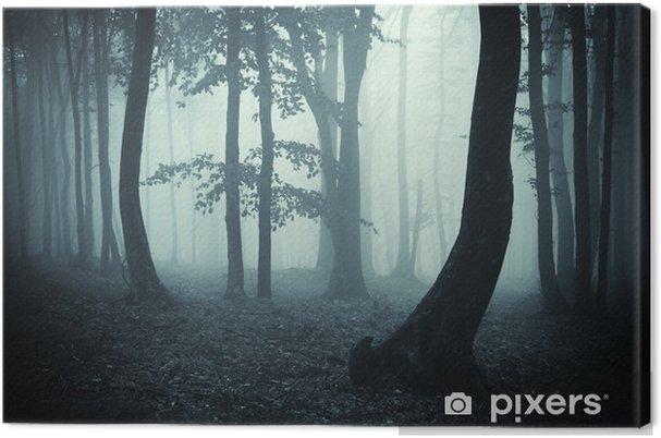 Obraz na płótnie Sylwetki drzew w ciemnym lesie - Tematy
