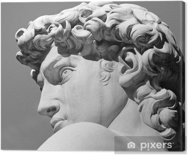 Obraz na płótnie Szef David rzeźby Michała Anioła, Florencja, Toskania - Zabytki