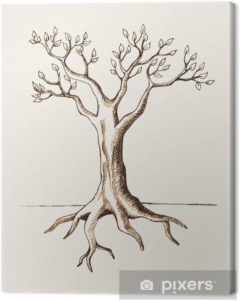 Obraz na płótnie Szkic ilustracji drzewa - Drzewa