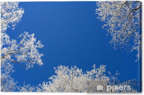 Obraz na płótnie Szron na drzewach - Pory roku