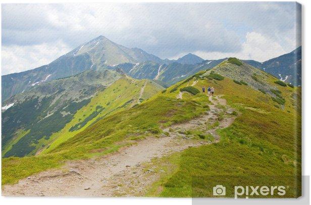 Obraz na płótnie Tatry - Dolina Chochołowska - Europa