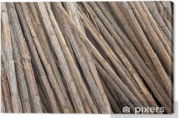 Obraz na płótnie Topola drzewko - Tekstury