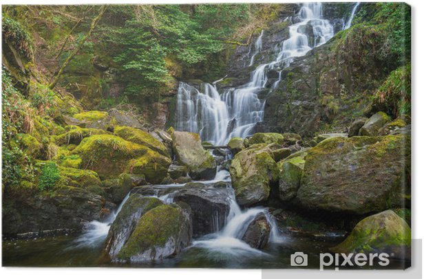 Obraz na płótnie Torc Wodospad w Parku Narodowym Killarney - Irlandia - Europa