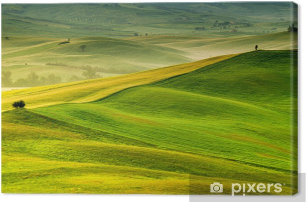 Obraz na płótnie Toskania - Włochy - Tematy