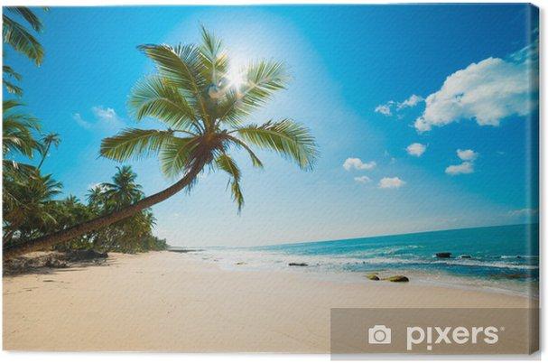 Obraz na płótnie Tropikalna plaża w słońcu - Malediwy