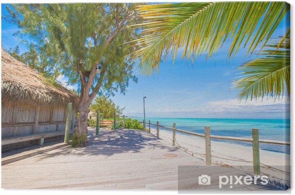 Obraz na płótnie Tropikalna plaża z białym piaskiem i palmami na Karaibach, Turków - Wyspy