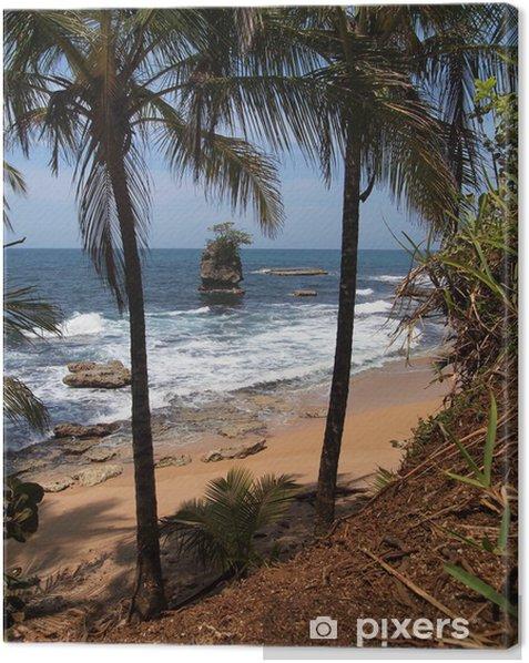 Obraz na płótnie Tropikalna plaża z rafą - Ameryka
