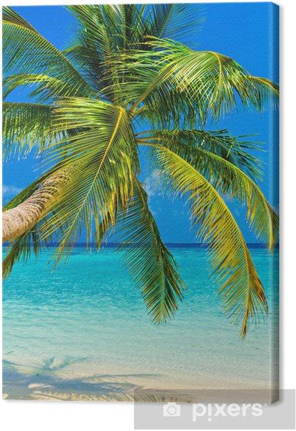 Obraz na płótnie Tropikalna plaża -