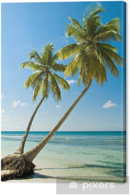 Obraz na płótnie Tropikalna plaża - Palmy