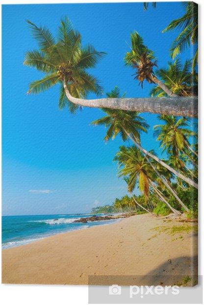 Obraz na płótnie Tropikalna plaża - Woda