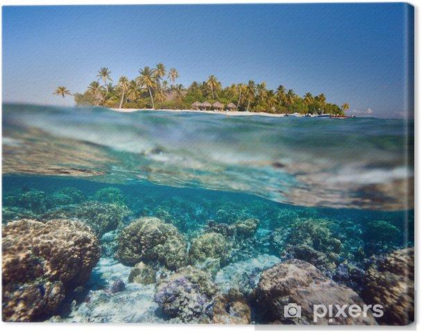 Obraz na płótnie Tropikalna wyspa nad i pod wodą - Wakacje