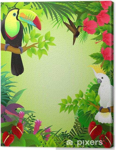 Obraz na płótnie Tropikalnych ptaków -