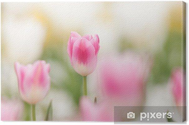 Obraz na płótnie Tulip Fields - Kwiaty
