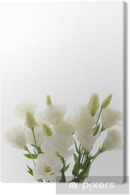Obraz na płótnie Turcja dzwonek - Kwiaty