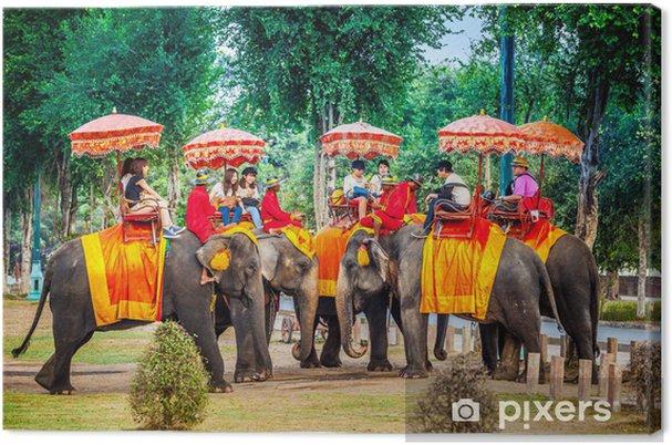 b617fe690a80fe Obraz na płótnie Turysta zabawy z jazdy na słoniu • Pixers® • Żyjemy ...