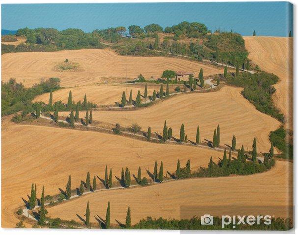 Obraz na płótnie Typowy toskański krajobraz - Europa