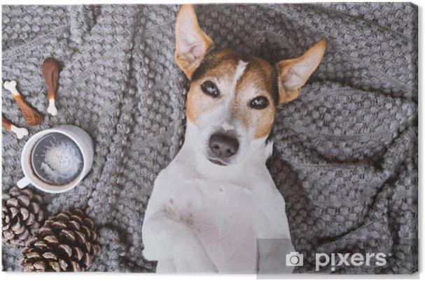 Obraz na płótnie Uroczy jack russell pies leżąc z powrotem na koc z filiżanką kawy i traktuje patrząc na kamery pet wziąć selfie koncepcja widok z góry - Zwierzęta