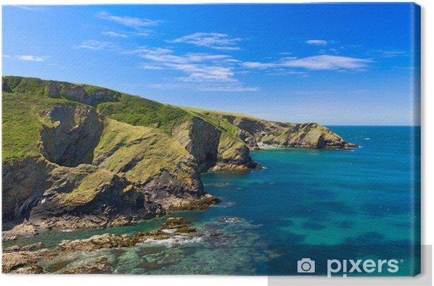 Obraz na płótnie Urwisko w wybrzeża Kornwalii pobliżu Port Issac, Cornwall, Anglia - Europa