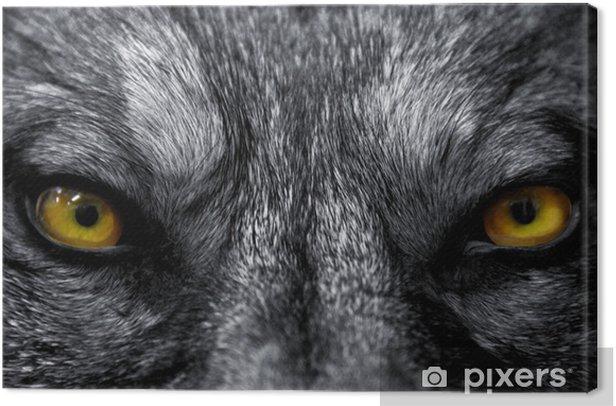 Obraz na płótnie Uznają de predateur - Zwierzęta