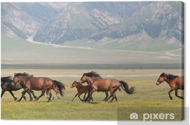 Obraz na płótnie Użytki zielone krajobrazy - Azja