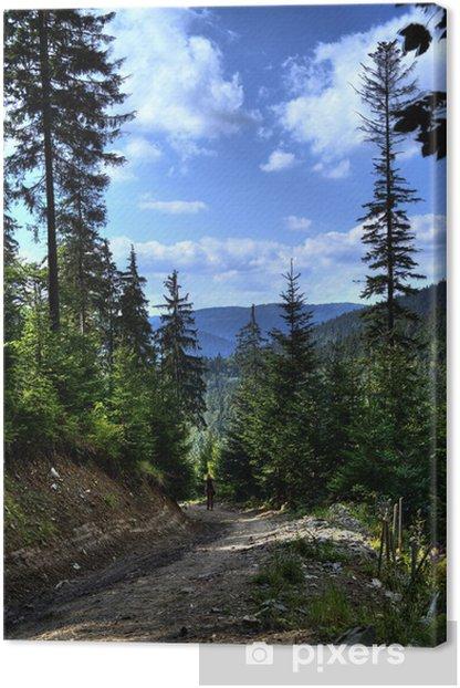 Obraz na płótnie W górach - Europa