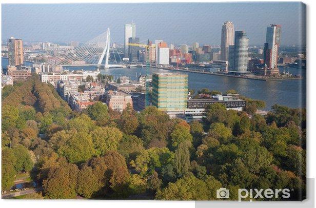 Obraz na płótnie Widok części miasta Rotterdam i park z wieżą Euromast - N - Europa