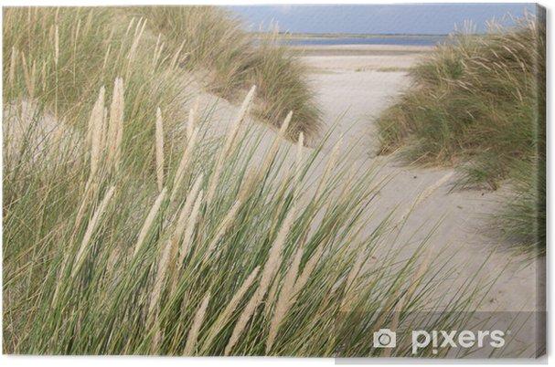Obraz na płótnie Widok na plaży z wydmami w Holandii - Holandia
