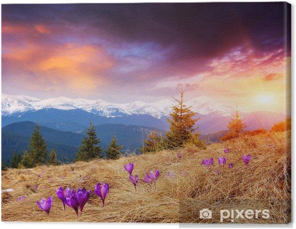 Obraz na płótnie Wieczór Wiosna w górach - Pory roku