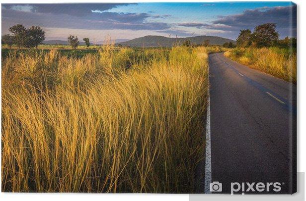Obraz na płótnie Wiejska droga - Wolność