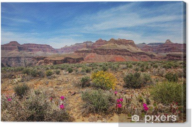 Obraz na płótnie Wielki Kanion - Natura i dzicz