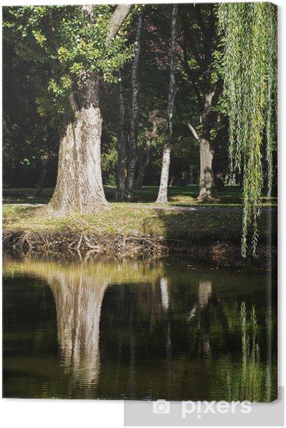 Obraz na płótnie Wierzba płacząca (Salix babylonica) - Pory roku