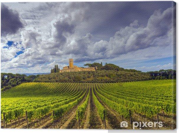 Obraz na płótnie Winnic w regionie Chianti, Toskania, Włochy - Tematy