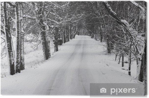 Obraz na płótnie Winter alley - Tematy