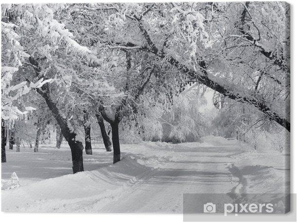 Obraz na płótnie Winter Park, Krajobraz - Style