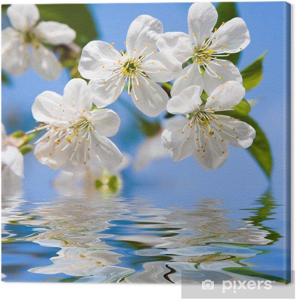 Obraz na płótnie Wiosenne kwiaty, piękno - Pory roku