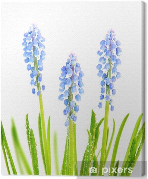 Obraz na płótnie Wiosenne kwiaty - Święta międzynarodowe
