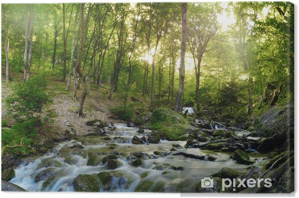 Obraz na płótnie Wodospad las - Tematy