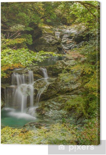 Obraz na płótnie Wodospad Yasui doliny zamian - Woda