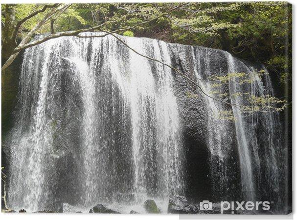Obraz na płótnie Wodospad - Cuda natury