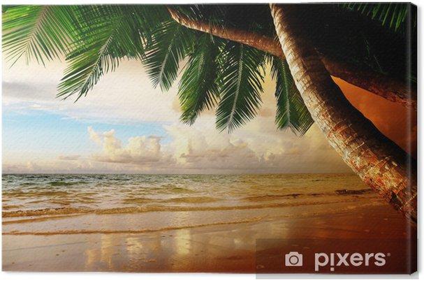 Obraz na płótnie Wschód słońca na plaży Karaibów - Tematy