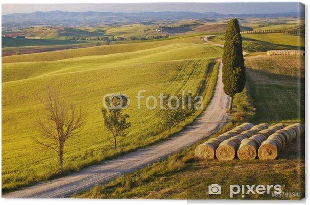 Obraz na płótnie Wsi, San Quirico D'Orcia, Toskania, Włochy - Rolnictwo